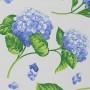Hortensias azul