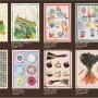 Catálogo Paños de Cocina Verano 2021-14